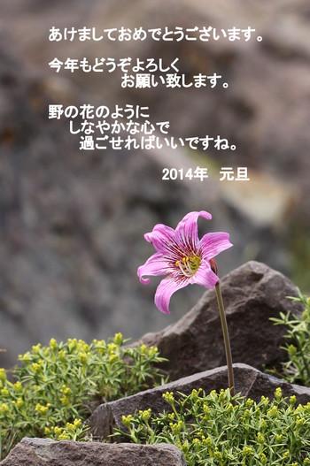 1img_3209006